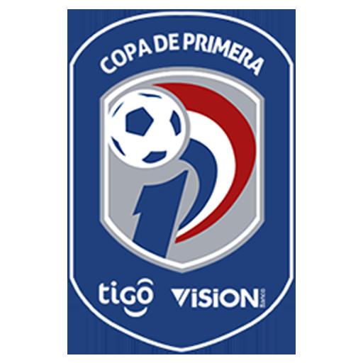 Лого Парагвай. Первый дивизион