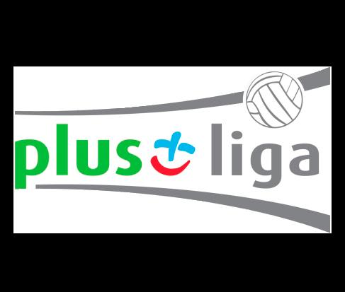 Лого Польша. Высшая лига